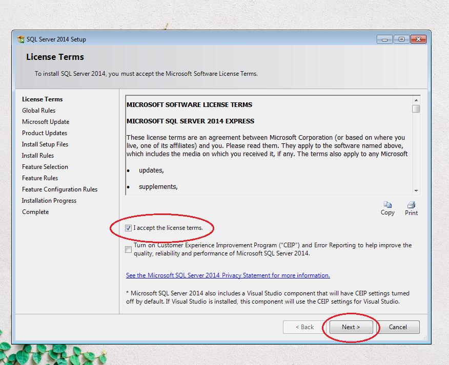 Màn hình cài đặt SQL Server